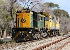 D765 Hawthorn 06/09/2018 (Dom Quartuccio) Tags: d765 872 8030 qube le light engine train trains rail railway railroad transport transfer transportation sar nswgr sa south australia adelaide artc morning alco dl531