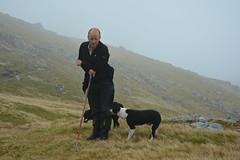 Shepherd & Collies. (Davie Main) Tags: shepherd shepherdanddogs shepherdandcollies collies bordercollies thebordercollie hillshepherd mountainshepherd scottishshepherd scotsshepherd argyllhills argyllandbute cruachanhills scotland stobgarbh nikond7100 cruachanhorseshoe cruachanhorseshoewalk