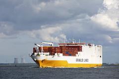 GRANDE TEMA (angelo vlassenrood) Tags: ship vessel nederland netherlands photo shoot shot photoshot picture westerschelde boot schip canon angelo walsoorden cargo container grandetema roro
