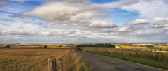the road over Wylye Down (HHH Honey) Tags: wiltshire landscape clouds cloudscape road wylyevalley wylyedown fence sonyα7ii sigma2470lens sigma abigfave