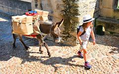 Pilgrim & beast of burden (M McBey) Tags: pilgrim child donkey camino caminodesantiago pontvalentre cahors france bridge walker caminofrancés pilgrimage cute nikon d7100