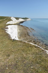 Seven Sisters and Birling Gap (PLawston) Tags: uk england britain east sussex south downs national park seven sisters country chalk lighthouse tout belle cliffs birling gap beachy head