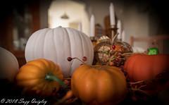 Fall (LIGHTSTALKER 13) Tags: fall pumpkins stilllife