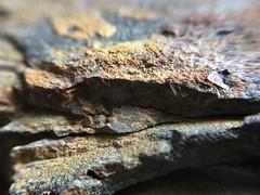 Rocks (Espykrelle) Tags: macromondays macro slate ardoise hmm theme rocks roches nature texture cracked smileonsaturday