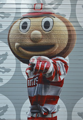 brutus on a roll-up door (brown_theo) Tags: mascot image ohio columbus southstands osu ohiostadium buckeye brutus