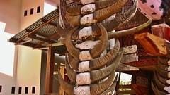 INDONESIEN; SULAWESI, Tanah Toraja , in Lemo, Giebelschmuck an einem   tongkonan , die Büffehörner der Opferstiere und dieSchnitzereien symbolisieren  den Wohlstand der Familie,  17628/10637 (roba66) Tags: sulawesi urlaub reisen travel explore voyages rundreise visit tourism roba66 asien asia indonesien indonesia insel celebes island île insulaire isla toraja tanahtoraja volk brauchtum tradition bauwerke «torayavillage» tongkonan «ricestore» reisspeicheralang ahnenkult mythen bauwerk architektur architecture arquitetura building bau façade platz places historie history historic historical geschichte skulptursculpture relief urban giebel holzschnitzerei