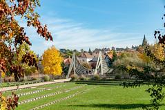 Passerelle du Graoully (Metz, France)-107 (MMARCZYK) Tags: metz grandest france moselle 57 parc de la seille pont ost bridge passerelle kosmi terrell ouvrage dart ingenierie paysage