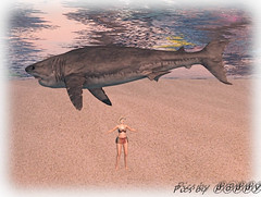 surfing and sharks jpg (6) (Poppys_Second_Life) Tags: 2l kether ketherfarshore picsbyⓟⓞⓟⓟⓨ popi popisadventuresin2l popikone popikonesadventuresin2l poppy sl secondlife virtualphotography fairhaven shark