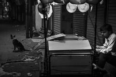 life on the street (charlesgyoung) Tags: olddelhi india delhi d500 streetphotography rajasthan charlesyoung karineaignerphotographyexpedition nikon nikonphotography nikondx blackandwhite