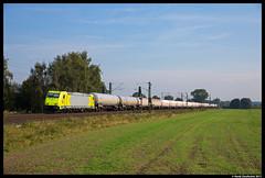 RheinCargo 119 005, Nottuln 22-09-2017 (Henk Zwoferink) Tags: nottuln nordrheinwestfalen duitsland de henk zwoferink 119 005 alpha trains rheincargo traxx bombardier
