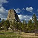 A Lone Raven Soaring Overs the Devils Tower National Monument