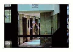 (Miguel E. Plaza) Tags: analog analogphotography filmphotography film filmcamera streetphotography night om1 olympus kodak proimage argentina laplata arquitectura architecture ishootfilm 35mm