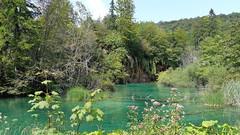 20180818_112041 (rmassart) Tags: m08 y2018 croatia plitvicka jezera plitvickajezera plitvichka lakes