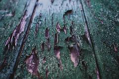 changing colors    l  2018 (weddelbrooklyn) Tags: farbe farben holz bunt bretter tür holztür verwittert alt wechselndefarben nikon d5200 35mm color colors wood colored boards door woodendoor old weathered