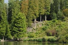 (degreve.sarah) Tags: stair lake wood