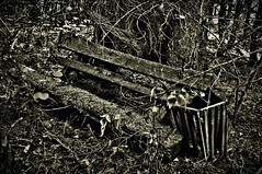 Verlassene Bank - Explore 19.9.2018 Platz 27 (Uli He - Fotofee) Tags: wanderweg spählerberg rhönblick hochrhöner landesgrenze zonengrenze katzenstein ulrike ulrikehe ulihe uli ulrikehergert hergert nikon nikond90 fotofee