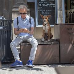 Ci penso io a controllare (tullio dainese) Tags: 2018 bologna cani