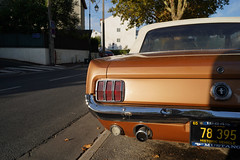 Ford Mustang GT 289 (monsieur Burns) Tags: sonyphotographing ford mustang 289