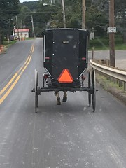Amish in Potter County, PA (mudder_bbc) Tags: buggy amish transportation ulysses pottercounty pennsylvania theworldisbeautiful
