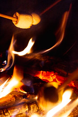 20180914_Campfire Storytelling_Margo Reed Photo-10 (Philadelphia Parks & Recreation) Tags: green ppr philadelphiaparksandrecreation philadelphia northeastphilly pennypackenvironmentalcenter campfire campfirestorytelling smores summer summer2018 2018 environmentalcenter environmentaleducation