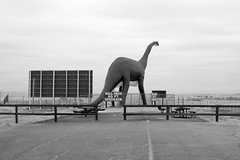 80 ft. (masande) Tags: southdakota dinosaur walldrug picnic midwest interstate roadside attraction deadend billboard road brontosaurus