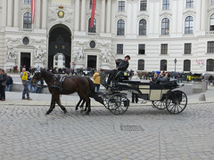 Carriage rides in Vienna #5 (jimsawthat) Tags: carriagerides architecture architecturaldetails imperialpalace urban austria vienna