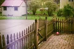 Yard (Vincent F Tsai) Tags: film analog 35mm fuji fujifilm superia minolta fence ball house yard