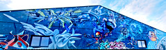 Graffiti 2018 in Wiesbaden (pharoahsax) Tags: graffiti wiesbaden wb pmbvw bw hessen süden deutschland kunst art streetart street urban urbanart paint graff wall germany artist legal mural painter painting peinture spraycan spray writer writing artwork tag tags worldgetcolors world get colors