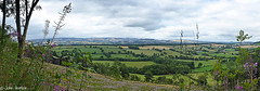 South Shropshire Hills (Row 17) Tags: uk gb britain england shropshire rural countryside hills hillside fields farmland lumix panasonic panorama