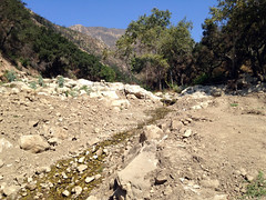 Montecito Mud Slide Aftermath (1) (Ian E. Abbott) Tags: southerncalifornia socal mudflow mudslide flood disaster montecito santabarbara