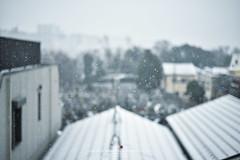 Snowy day Tokyo (Pop_narute) Tags: snowy snow white city tokyo japan blur