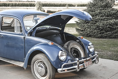 08282011-2 (ReesKlintworth) Tags: 1967 beetle bug carvehicle volkswagen volkswagenbeetle