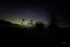 Night time at a swamp (mirri_inc) Tags: fog mist dark swamp night low light
