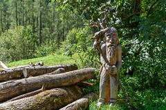 Valle Verzasca 2018 - Sonogno (karlheinz klingbeil) Tags: wood suisse holz swissalps schweiz alps forest switzerland stadt skulptur sculpture wald alpen city sonogno tessin ch
