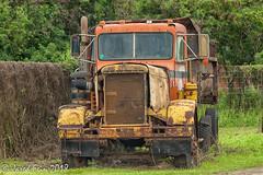 Peterbilt But Not to Last (SewerDoc (3 million views)) Tags: abandoned grovefarm hawaii kauai koloasugarmill peterbilt truck rust decay old textures explore explored