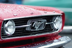 Ford Mustang (tamson66) Tags: ford mustang 1966 classic cars detail