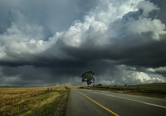Stormy weather en route... (OnkiPonki) Tags: nature clouds storm rain tree landscape winter canon eos grey dark scenery southafrica moorreesburg travel driving road