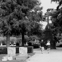 intergenerationeel (regionaal landschap Schelde-Durme) Tags: waasmunster begraafplaats openmonumentendag