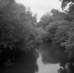 Cold river (Rosenthal Photography) Tags: eitzmühlen ff120 rodinal15020°c11min landschaft 20180603 schwarzweiss pentaconsixtl flus bäume asa400 pflanzen mittelformat oste bw bnw 6x6 analog ilfordhp5 blackandwhite pentacon sixtl czj zeiss biometar 80mm f28 ilford hp5 hp5plus rodinal 150 epson v800 landscape summer river trees