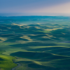 Steptoe Butte (ValeTer_) Tags: sea horizon grassland sky atmosphere ocean calm water resources morning nikon d7500 usa wa washington steptoe butte landscape nature steptoebutte