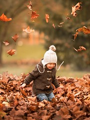 Flying Leaves (agirygula) Tags: autumn leaved orange warm boy laughing jumping 3 years 2 2yearsold had brown childhood child children kid childphotography familyshooting