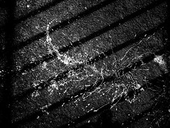 rnor80722.jpg (Robert Norbury) Tags: fuckit somearelandscapessomearenot icantbearsedkeywording fineartphotography blackandwhite photographer itdoesntmatterwhattheyarepicturesoftheyarejustpictures itdoesntmatterwhattheyarepicturesoftheyarejustpictur