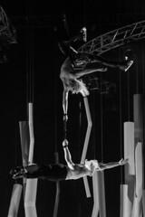 DAE_9928r (crobart) Tags: quatro aerial acrobatics ice skating skaters show canadian national exhibition cne 2018 toronto cocacola coliseum