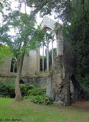 Walsingham Abbey 04 (Row 17) Tags: uk gb greatbritain britain england norfolk architecture historicsite historic religioussite religious abbey ruin ruins medieval church churches lumix panasonic