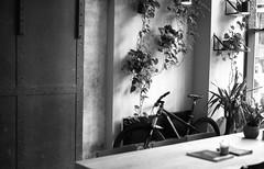 Bristol - Society Cafe (richreiss) Tags: bristol society cafe bicycle bike interior ilford fp5 125 pentax me super 50mm coffee shop monochrome plants