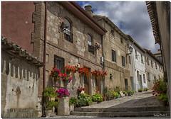 BURGOS, LERMA (Lorenmart) Tags: lerma burgos castillayleon españa spain flores flowers canoneos550d lorenmart nwn