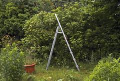 Paris, 2008 (Joseff_K) Tags: pelouse lawn vert green jardin garden verdure greenery echelle ladder paris france