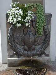 La fontaine de l'Oie à Foix (Iris@photos) Tags: france occitanie ariège foix fontainedeloie