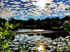 Beautiful Morning ☀️ (shahzad.alvi) Tags: colours fall summer hot skyline reflection sunrise sunset sun pictureoftheday perfect gta etobicoke ontario river water sky clouds morning iphoto canada toronto apple iphone takenfromiphone flickerfriday friday flicker weekend beautiful