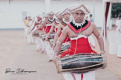 Traditional Drummers (Brian Dharmasena) Tags: drums traditional tradition candid candidshooter candidphotos candidshots temple concert red white vintage men sweat sun sunny perform performers